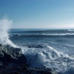 The Video Tsunami – 5 Reasons You Should Catch The Wave Now