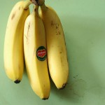 Bill Gates has said that intellectual property has the shelf-life of a banana, a statement that holds true when considering the higher education industry. Photo by Keepon I.