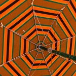 """With all the labels placed on non-traditional students in higher education, it's important for administrators (especially in continuing education units) to remember that they—like traditional learners—fall under the umbrella of """"university student"""". Photo by Joe Shlabotnik."""