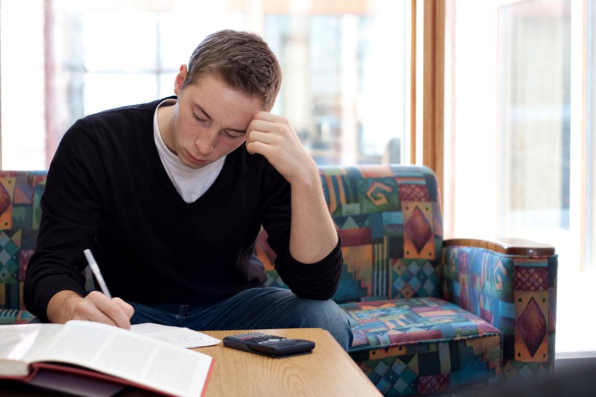 Homework helper reading market