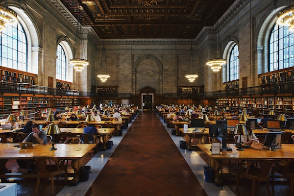 Higher Education Practices in a Democracy